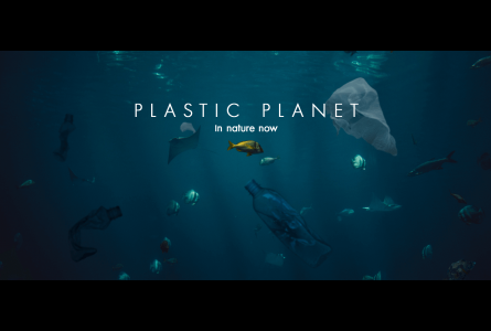 Underwater view of plastics and sealife